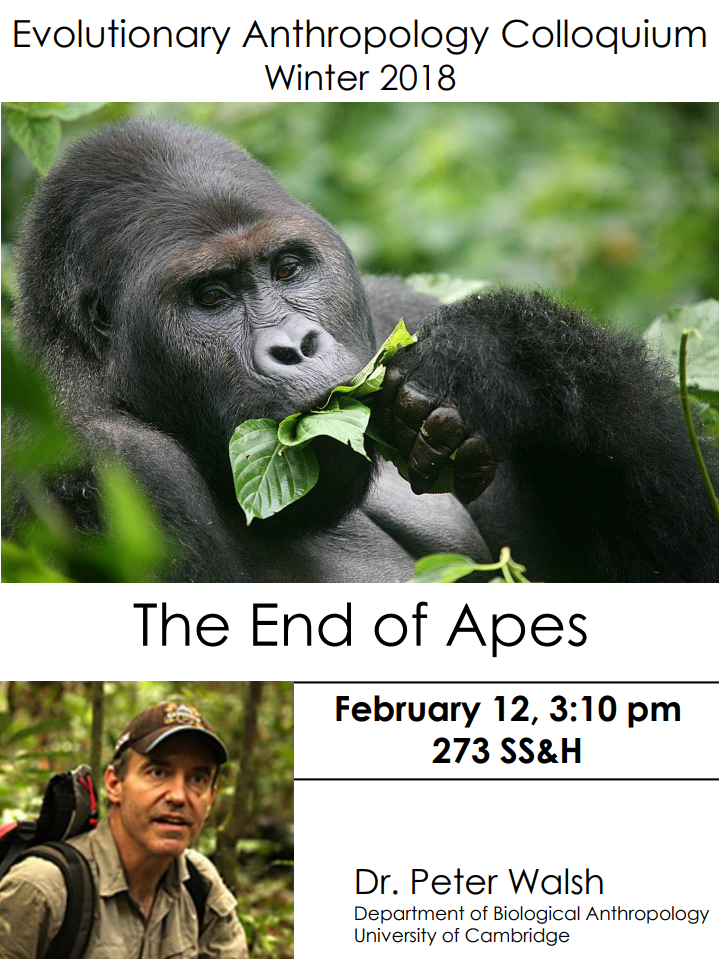 "Feb 12th: Anthropology Colloquium ""The End of Apes"" Peter Walsh, University of Cambridge"