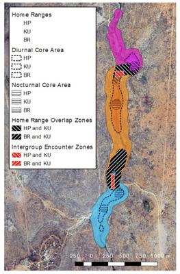 Range map of Vervet monkey groups