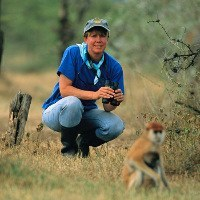 GPS Tracking Show Why Primates Need to Build Fences