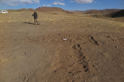 At the end of it all, we fill the excavation units. Izzy in the background.